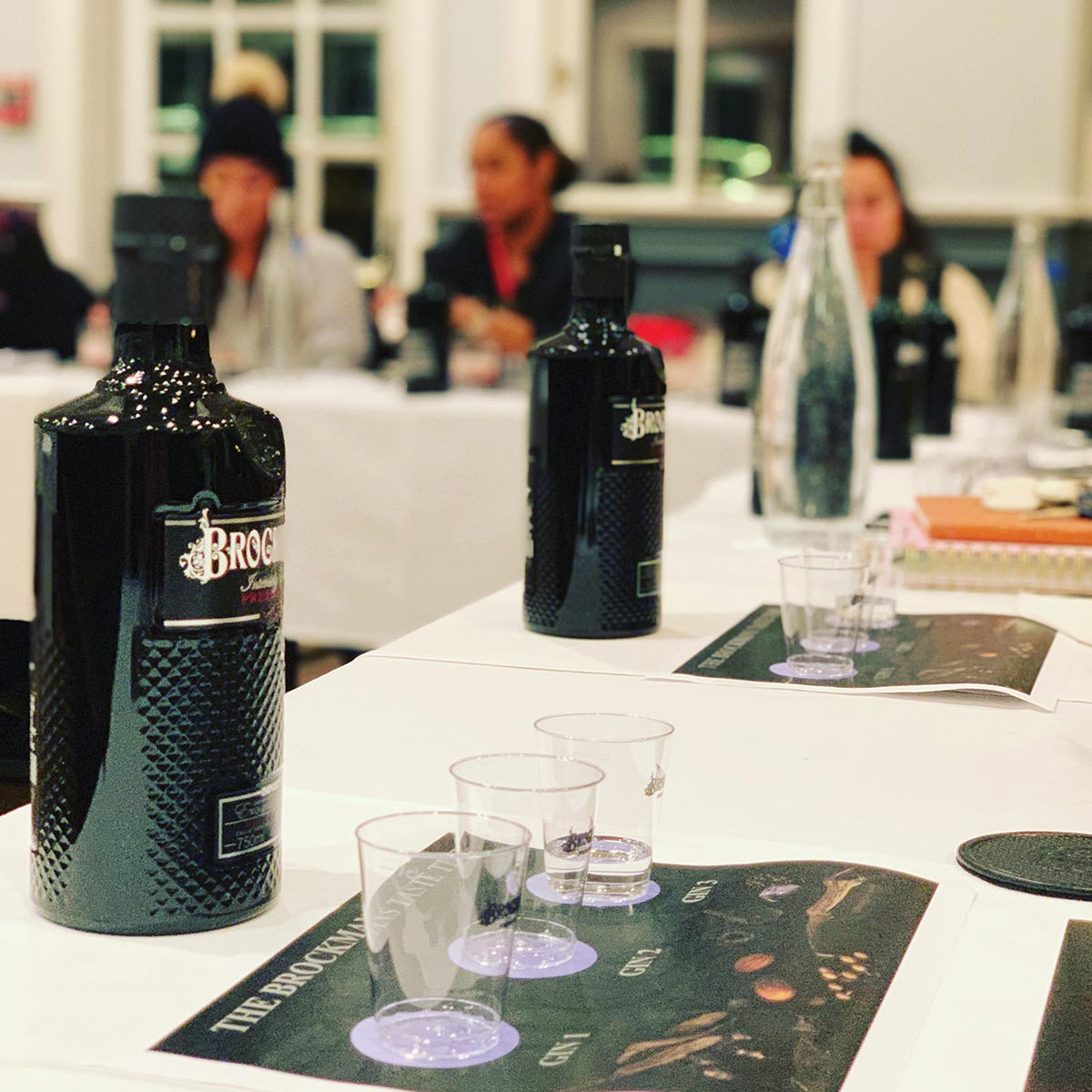 Brockmans Gin Brand Session Educates Promotion Team Members