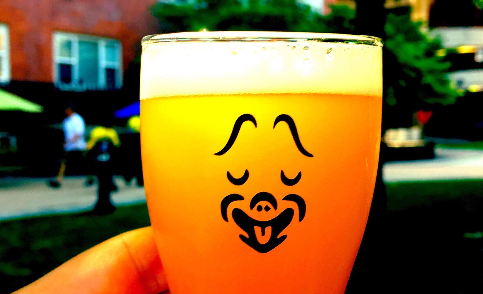 August 24, 2019: New Haven Craft Beer Fest