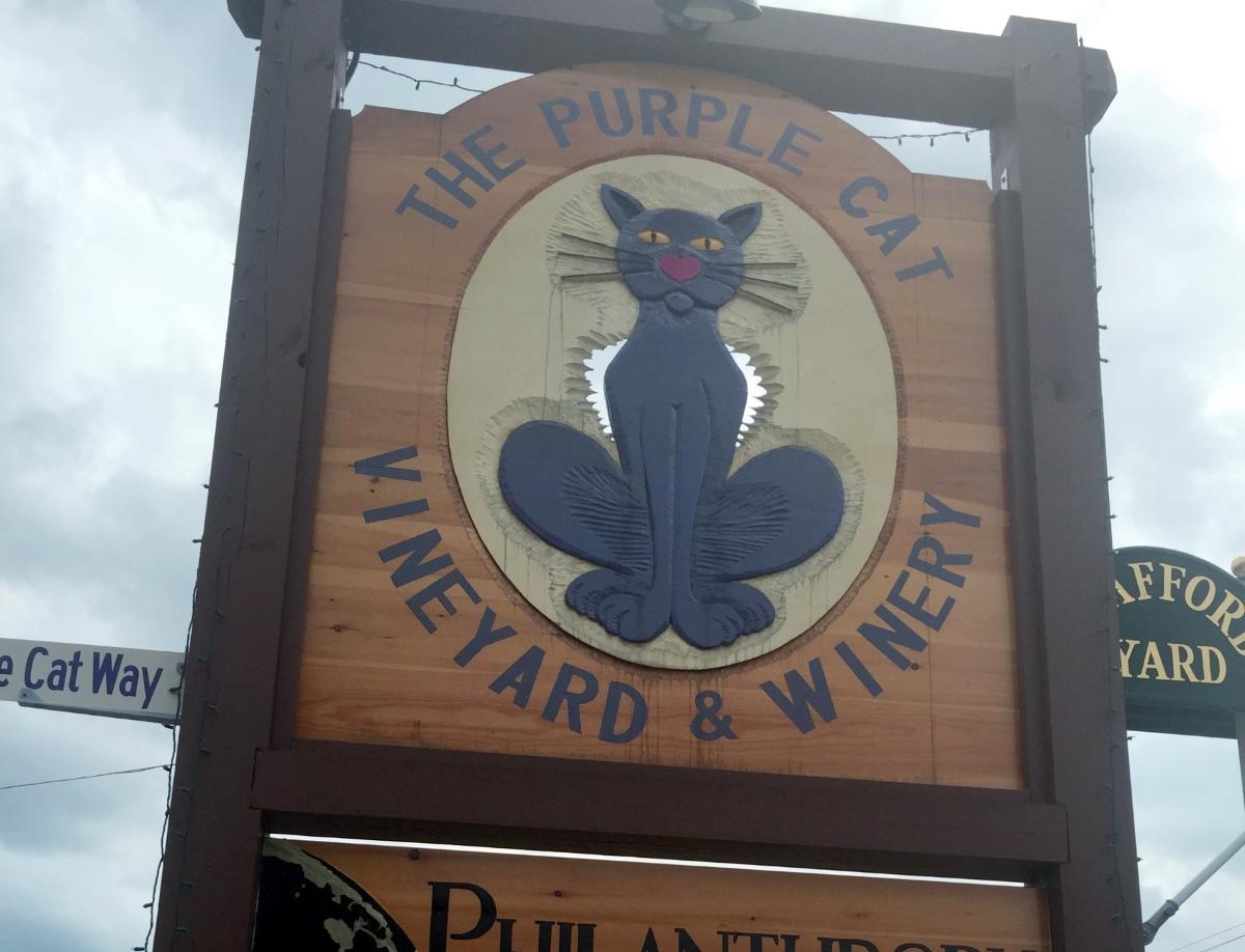 Vineyard View: The Purple Cat Vineyard & Winery Brews Up Business