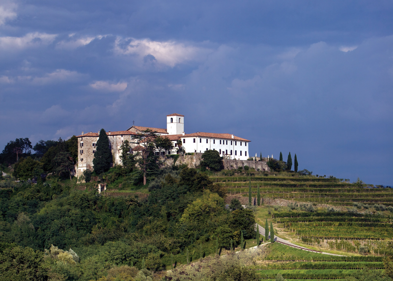March Wine Focus: Unusual Grapes Make Wine A Global Playground