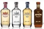 tequila_avion