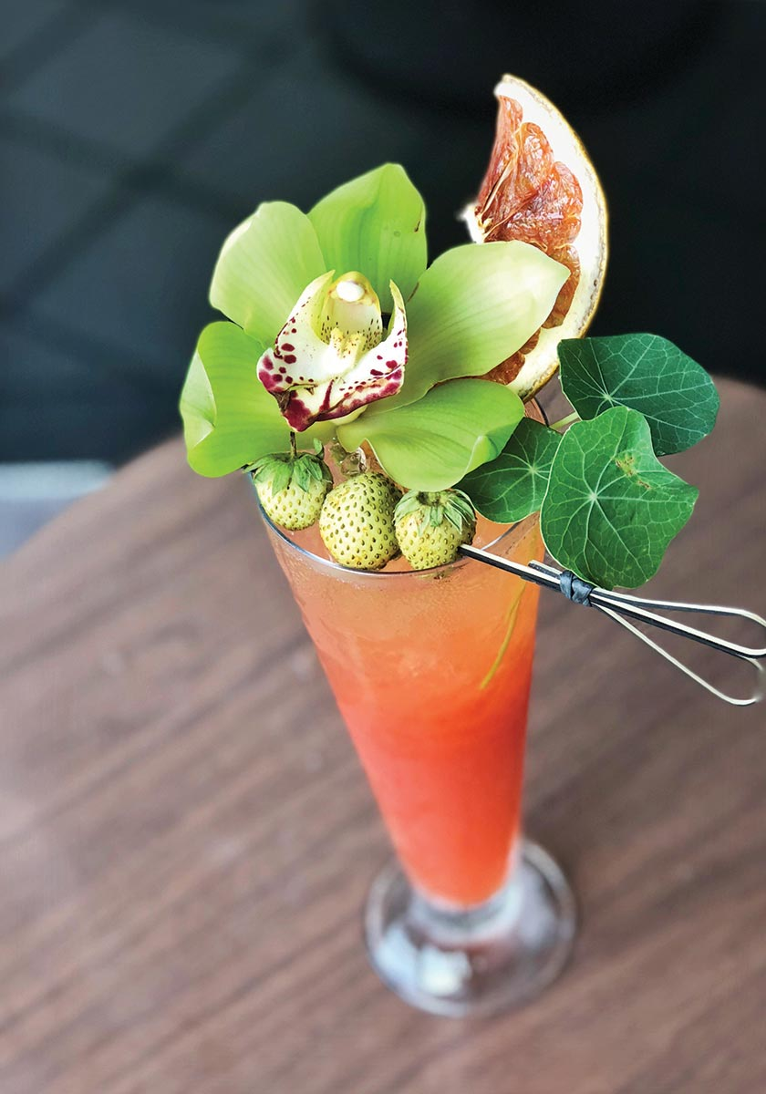 Serving Up: The Second Wind at Eight Seas