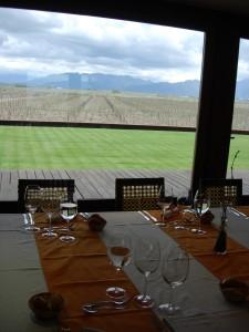 Ruca Malen's vineyard.