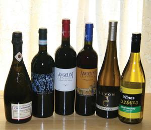 Angelini Wines