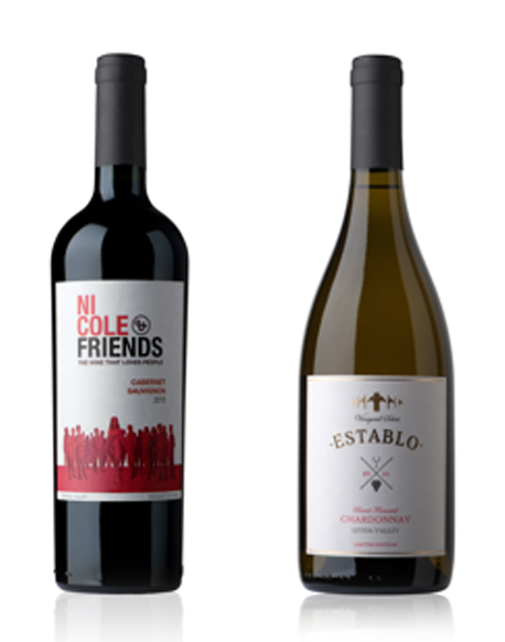 Chilean Artisanal Wine to Benefit People with Special Needs