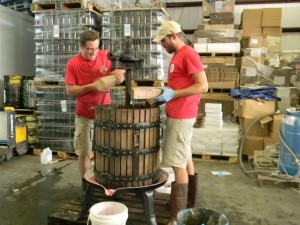 Newport Storm brewmaster, Derek Luke - left, and brewer, Jason Tsangarides - right, using Newport Vineyards wine press to press this year's blueberries from Shartner Farms for our Rhode Island Blueberry Beer.