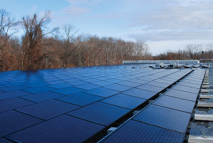 1,302 solar panels, which cover 50,000 square-feet of Eder Bros., warehouse roof.