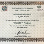 An individual certification that more than 50 members of the Geronimo team received for passing the Tequila Regulatory Council test.