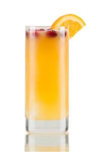 THE GINGER BELL 1 ½ oz. TANDUAY Silver Asian Rum ¾ oz. gingerbread simple syrup** 1 oz. orange juice 1 oz. white cranberry juice Combine ingredients over ice and shake well. Pour over large ice cube with cranberries frozen inside. Or pour over rocks and garnish with a few cranberries and an orange slice.