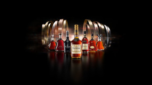 Hennessy Total Portfolio