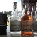 Gin Lane 1751 portfolio.