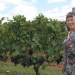 Elaine Mills, Grape Grower Viticulturist, Stonington Vineyards.