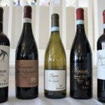 Italy's Zenato Wines include Alanera Rosso Veronese 2013, Amarone della Valpolicello Classico DOC 2012, Lugana di San Benedetto DOC 2015, Ripassa Valpolicella Superiore DOC 2013 and Valpolicella Superiore DOC 2014.