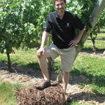 Jonh Nunes stands on grapevine bale. Photos provided by Newport Vineyards. Credit: Marianne Lee Photography.