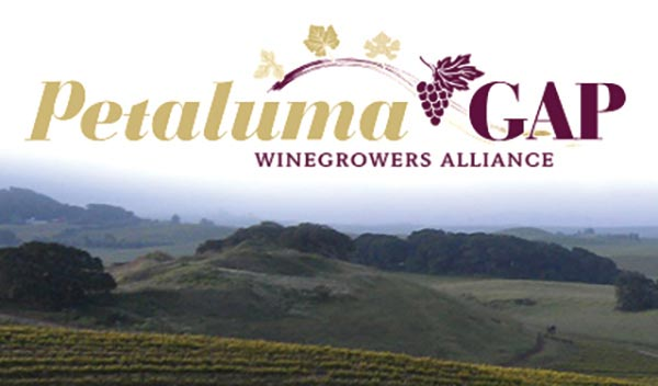 The Petaluma Gap Named Newest American Viticultural Area (AVA)​