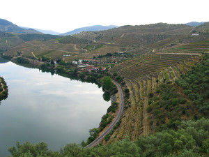 The Duoro River and Quinta de Vargellas, home to Taylor Fladgate. Photo taken by Micthell on a visit to the port producer in 2011.