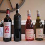 Villa Chiopris, Plozza and Pasetti wines.