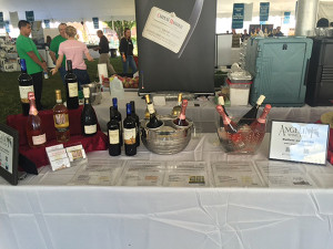 The Angelini Wines table display at the festival.