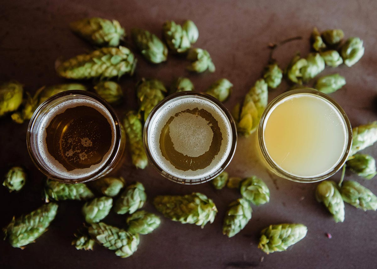 Beer Column: Hop Evolution