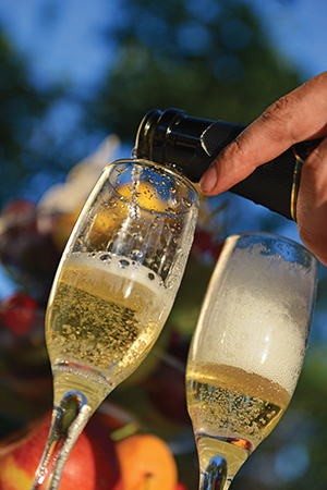 Guest Column: Champagne: Grand Marque vs. Grower?