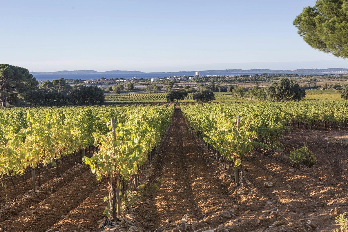 Moët Hennessy to Acquire Provence's Château du Galoupet