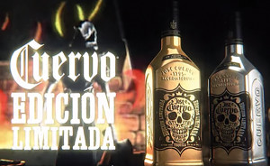 cuervo ltd