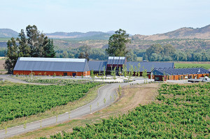 Center for Research and Innovation in Chile's Maule Valley