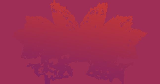August 27, 2016: ShakesBeer Festival