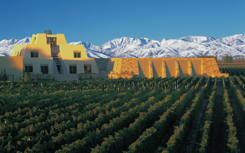 July Wine Focus: Argentina's Fresh Take