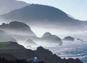 Ocean breezes and fog make the Sonoma Coast a hotspot for Pinot Noir in particular.