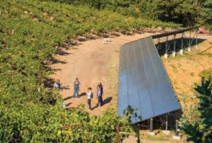 """Solar panels, seen here in Napa Valley, are just one of many ways the California wine industry has embraced """"green"""" practices."""