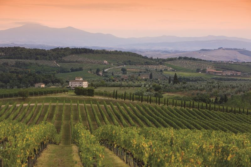 March Wine Feature: Chianti 101