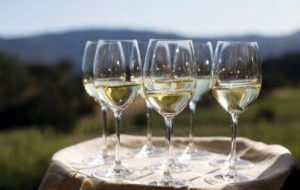Napa Sauvignon Blanc has gained critical acclaim and is helping to chip away at Chardonnay's long reign as top varietal white wine.
